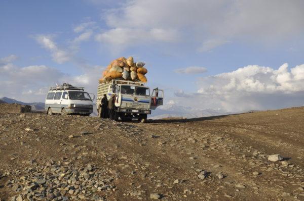 10_Afgan 10264